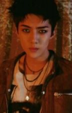 Sehun The Bad Boy (Sehun x Reader) by PamVang