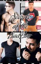 Secrets of the bad boy by BTR_Rocks