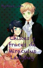 Fraces Y Chistes De Miraculous Ladybug by Alex_zen