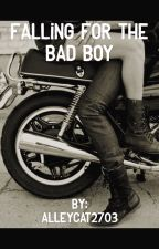 Falling For The Bad Boy  by alleycat2703