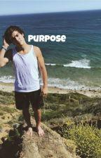 Purpose //E.D by _frappedolans_