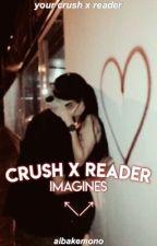 crush imagines | crush x reader by aibakemono