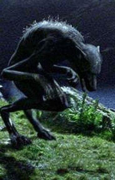 The Dark Side Of Werewolves
