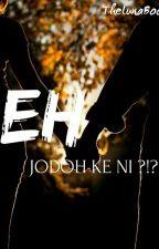 Eh, Jodoh ke Ni ?!?! by thelunaboo
