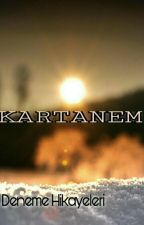 BİR KARTANESİ by bbirkartanesi