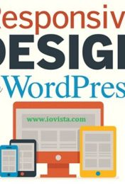Hiring the Proper WordPress Design and Developer in Dallas, Texas by iovista