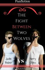 The Fight Between Two Wolves by -Asheline-