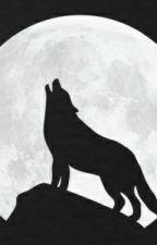 Geschichten vom einsamen Wolf by AbamWolf