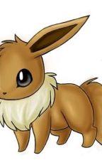 Pokemon adoption centre  by lizmlp2233456