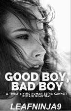 Good Boy, Bad Boy[Ongoing] by LeafNinja9