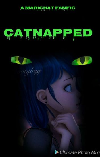 Catnapped [Finished] [Book 1]