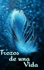 Trozos De Una Vida by Aramazi_12