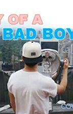 Diary Of a Badboy by pinafahira