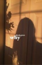 why | pjm ✓ by mlkyjimin
