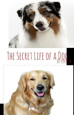 The Secret Life of Dogs by Ink-ie