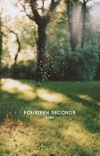 fourteen seconds by kovalactic