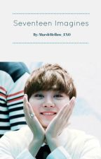 Seventeen Imagines by MarshMallow_EXO