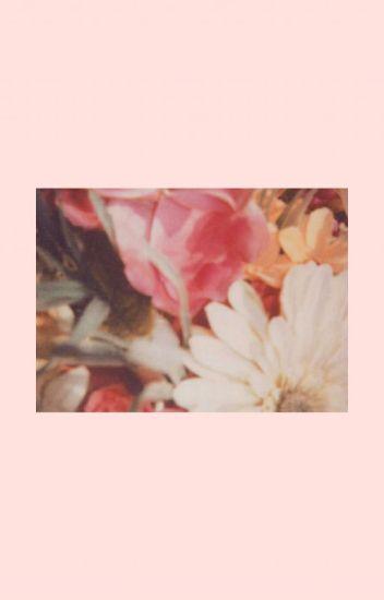 ♡ Frases Tumblr ♡