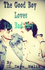 The Good Boy Loves The Bad Boy: Ziall by CallMeAsh_95