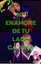 Me enamore de tu lado gatuno (marichat) lemmon by hiccelsa13