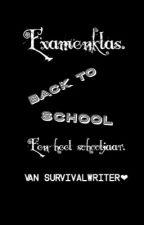 Een heel school jaar. Examenklas. by survivalwriterlover