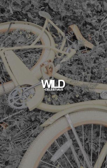 WILD ► GIF SERIES