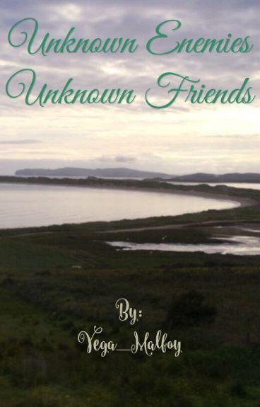 Unknown Enemies, Unknown Friends. (The Twins of Legend Rewritten)
