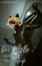 One shots Adrien Agreste/Chat Noir by XxElegansxX