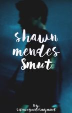 shawn mendes smut by silenceguidesmymind