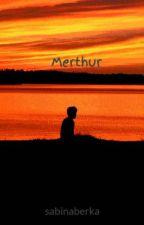 Merthur miniaturki by sabinaberka