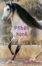 Příběh koně by Veru_best