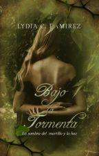 Bajo la Tormenta © by blytherose