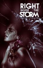 Right inside the storm // Tome 2 by Piera_Ntl
