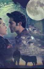 STEREK | TEENWOLF  by OctagonVil