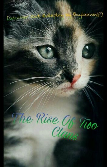 The Rise Of Two Clans (Warrior Cats Roleplay)