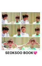 SEOKSOO BOOK by vaniacarat