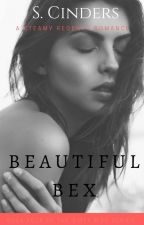 Beautiful Rebecca - BOOK 4 OF THE DIRTY BIRD SERIES by cinders75