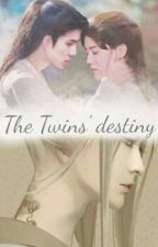 THE TWINS' DESTINY by invisible_clover