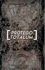 Protego Totalum》Marvel one-shots by starkdvst