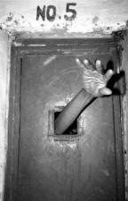 Insane Asylum RP by TashaDeclawed