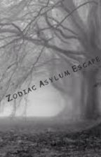 Zodiac Asylum Escapede by Noragamiotaku