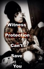 Witness Protection Can't Save You by TheAuthors