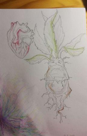 Moje Kresby Druhy Pokus Kone Wattpad