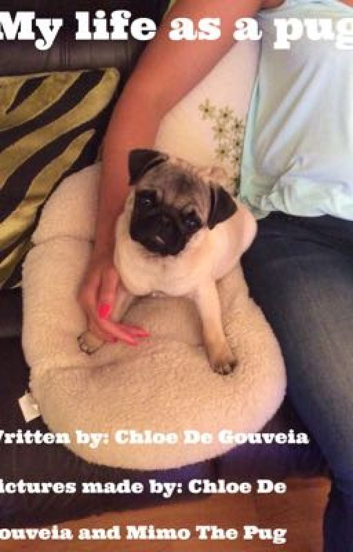 My life as a pug! (NOT FINISHED)  by ChloeDeGouveia