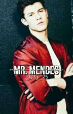 Mr Mendes by _lily_25