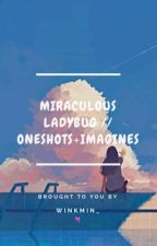 Miraculous Ladybug // Oneshots [Requests Open] by junnie_mintvk