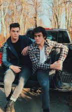 DOLAN TWINS IMAGINES  by hearteyedolans