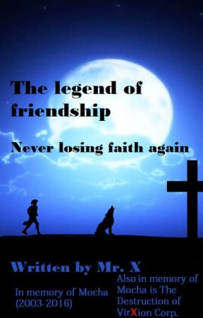 The legend of friendship: Never losing faith again by Damienrocks118