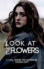 Look At The Flowers{Carl Grimes} by walkerjedi