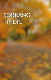SOBRANG TINDIG by PinkyBrownE
